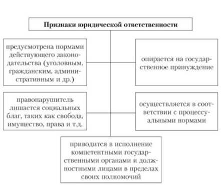 Структура правовых норм курсовая работа